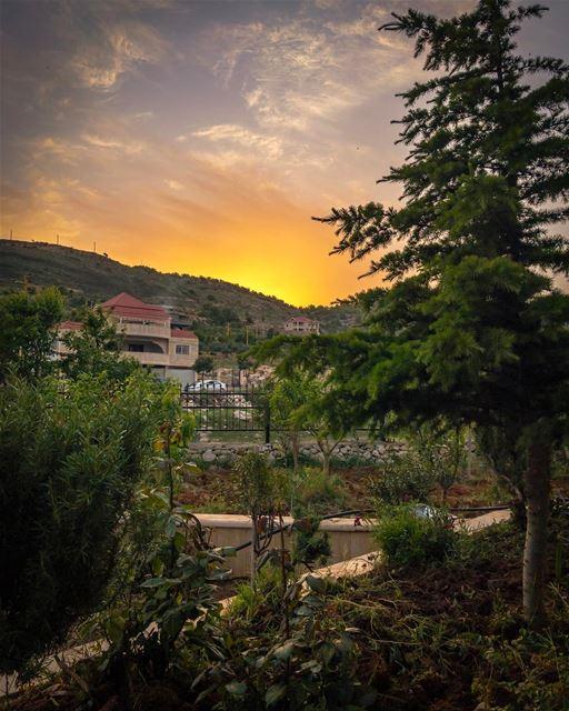 aramta southern sunset sunshine nature landscape lebanon_hdr... (Aaramta, Al Janub, Lebanon)