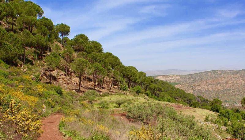 southlebanon heavenonearth kfarhamem lebanon peace safe lebanesearmy... (Kfar Hamâm, Al Janub, Lebanon)