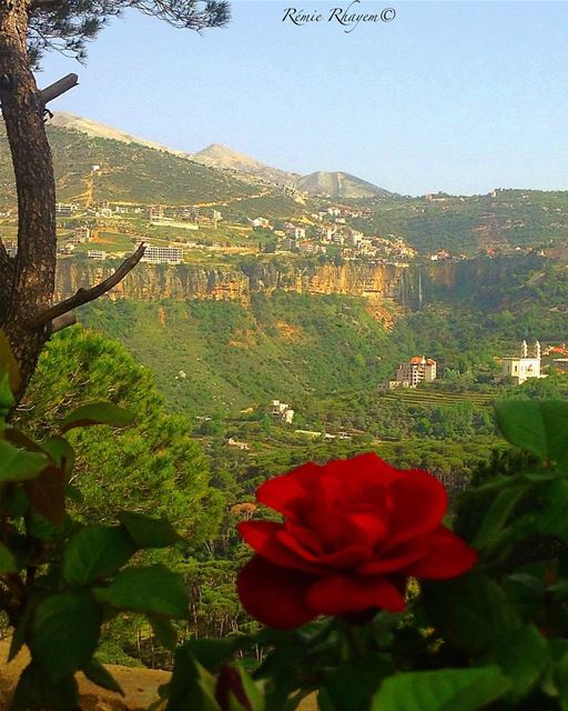 ~Beautiful Monday☕️🌹~ (Bkâssîne, Al Janub, Lebanon)