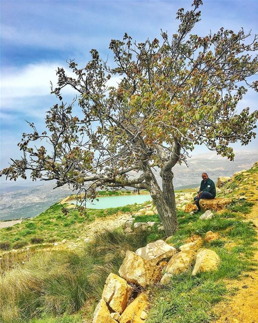 عمّو 🌿🏞 livelovelebanon beautifulplace beautifulnature hiking ... (Falougha, Mont-Liban, Lebanon)