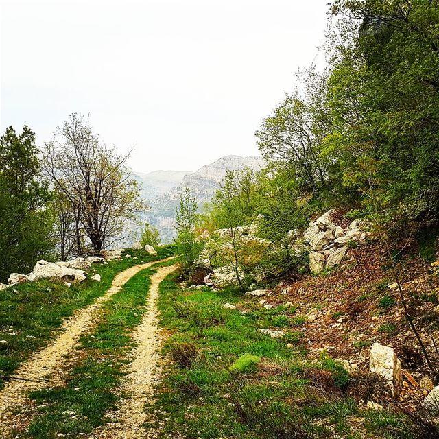 hikingtrail hikingadventure livelovehiking naturephotography naturelovers... (Akoura, Mont-Liban, Lebanon)
