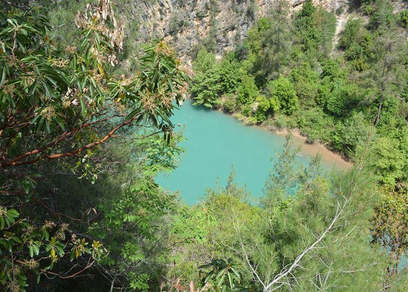 Lake View I loves_lebanon super_lebanon ig_lebanon lebanonbyalocal ... (Chouwen)