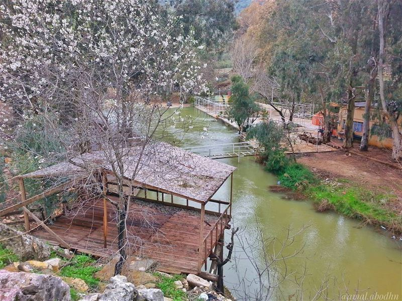 الحلم ليس ذلك الذي تراه في منامك،، انما الحلم هو الذي لا تنام من اجله 👌📷� (Hasbani River)