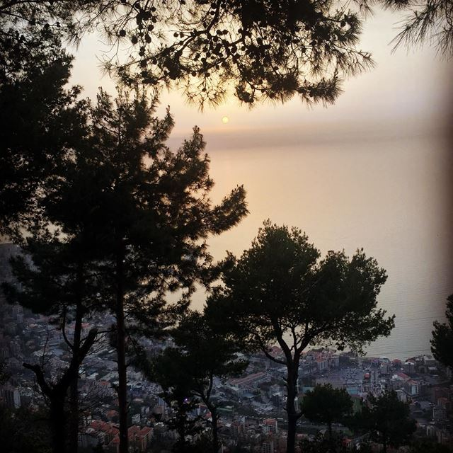 Sunset view nature sunset view sea ocean trees town village ... (Our Lady of Lebanon)