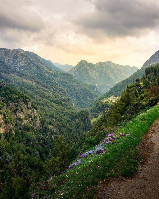 valley mountains lebanon green nature snapshot photo photos ... (Yahchouch)