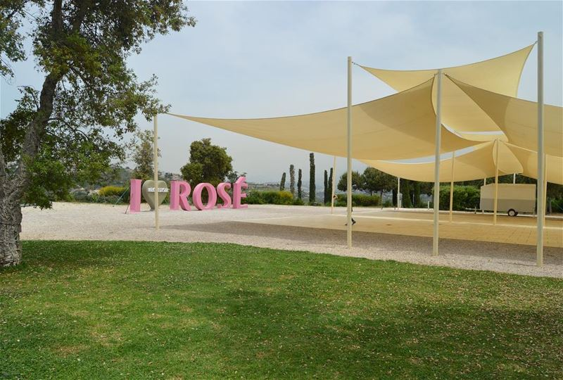 Rosy Rosé Roses etc. wheremyshoeslead. ShadeSails RoséLovers Ixir ... (Ixir Winery)