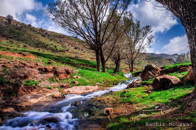river nature naturephotography spring nikon nikonphotography ...