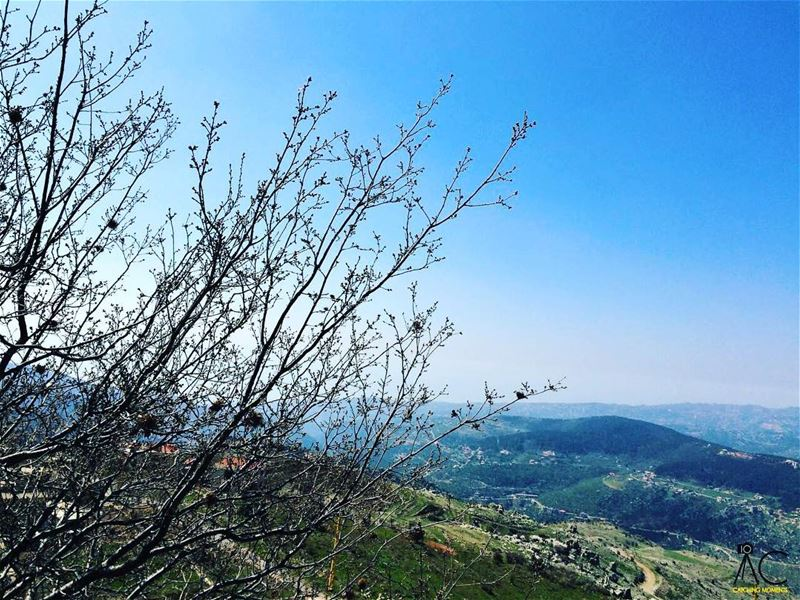 metn  lebanon  bluesky  lake  mountains  tree  livelovelebanon ...