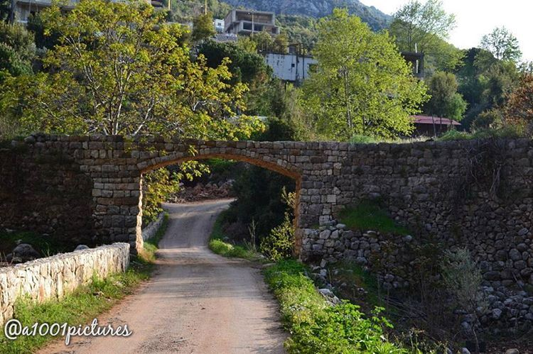 photos photography lebanon beirut nikon nature naturephotography ... (Tannurin At Tahta, Liban-Nord, Lebanon)