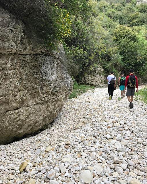 """In every walk with nature one receives more than he seeks""-john muir ... (Kfarhay)"