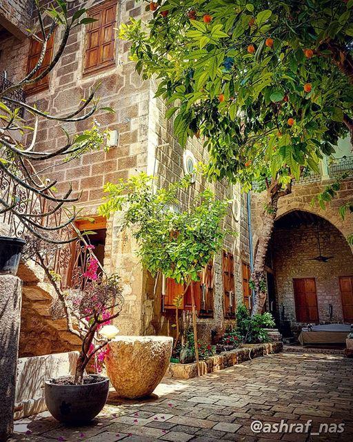 قال يا بيتاً لنا جاورتك الأنهرليت ما كان هنا من سناً لا يهجر...أفلتت من غ (Tyre, Lebanon)