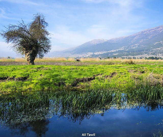 nature landscape beautiful nikon d810 reflection insta_lebanon ... (`Ammiq, Béqaa, Lebanon)