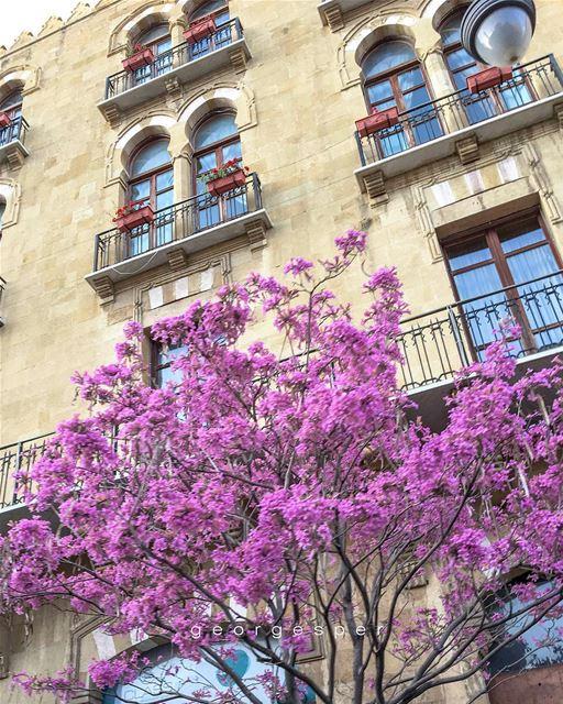 Beirut Central District 🇱🇧...... proudlylebanese ... (Beirut, Lebanon)