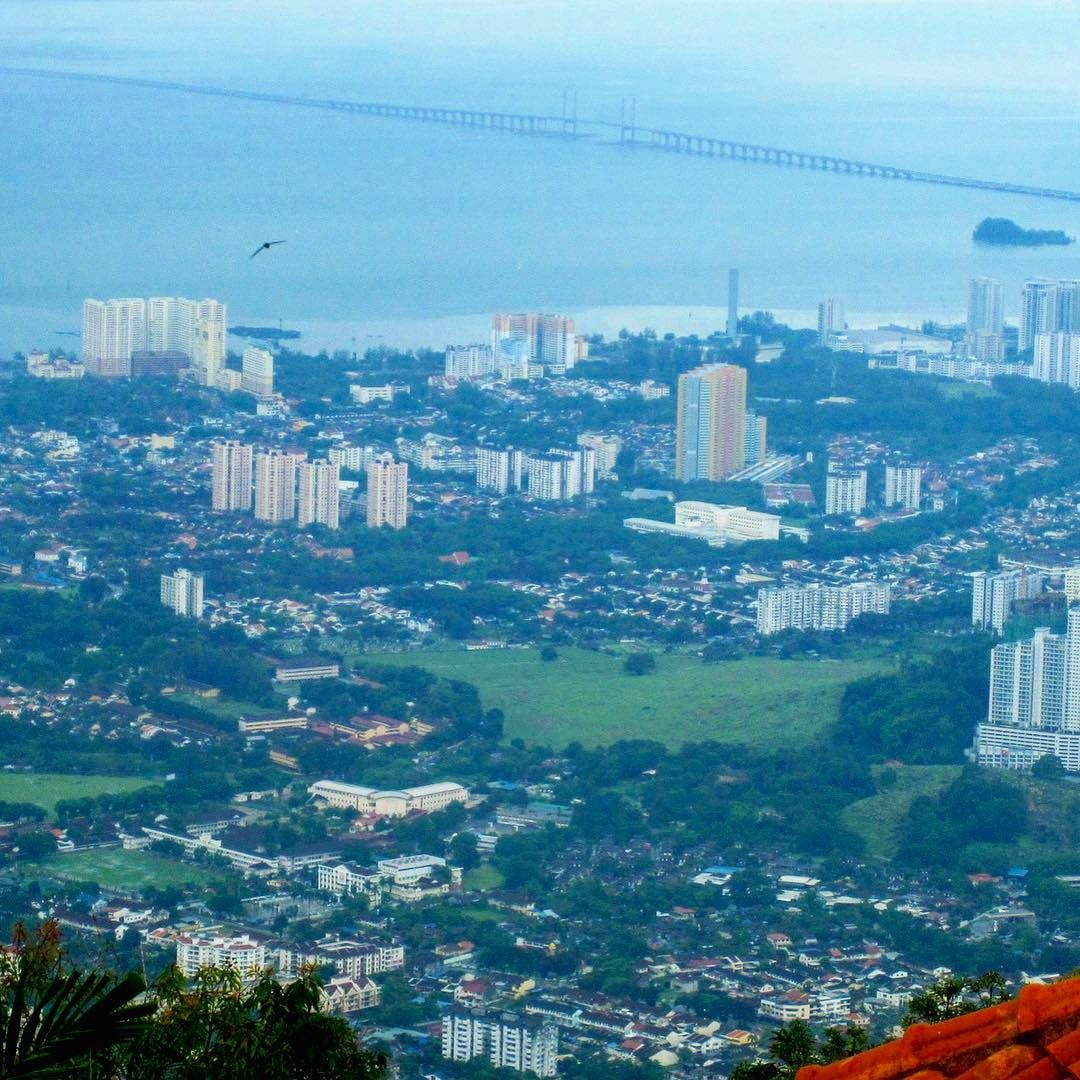 A Bird and A Bridge and all Green in between instatraveling instagood ... (Penang, Malaysia)