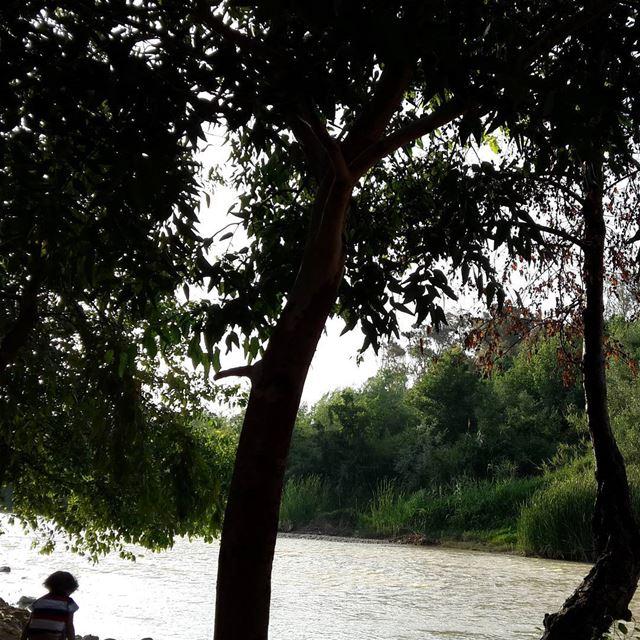 التفاؤل نهر الأمل الجارف 👊بين صخور التحديات. مساء الخير☺ livelovenature... (نهر الاولي - Al Awali River)