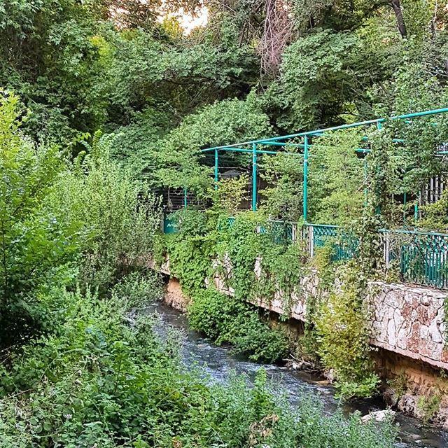 Berdawni zahle. zahle zahleh lebanon river berdawni restaurants valley... (Berdawni Zahle)