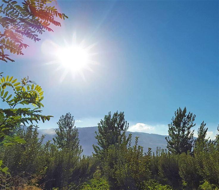 HEAVEN LiveLoveBekaa ... (Beqaa Valley)