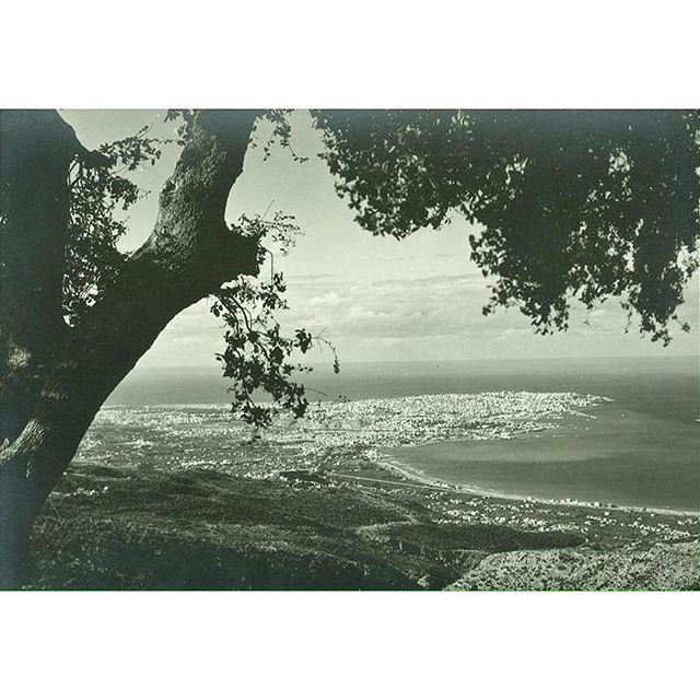 Beirut As seen From Mount Lebanon in 1936 .