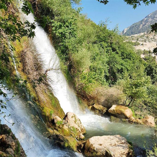 Untouched nature. ... (Kfarhilda, North)