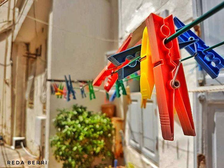 Live Life In Color 🐰 livelovetyre livelovesouth livelovebeirut ... (Tyre, Lebanon)