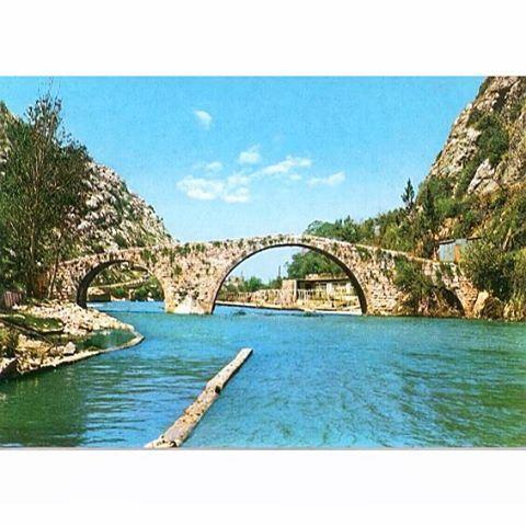 نهر الكلب عام ١٩٦١ ،
