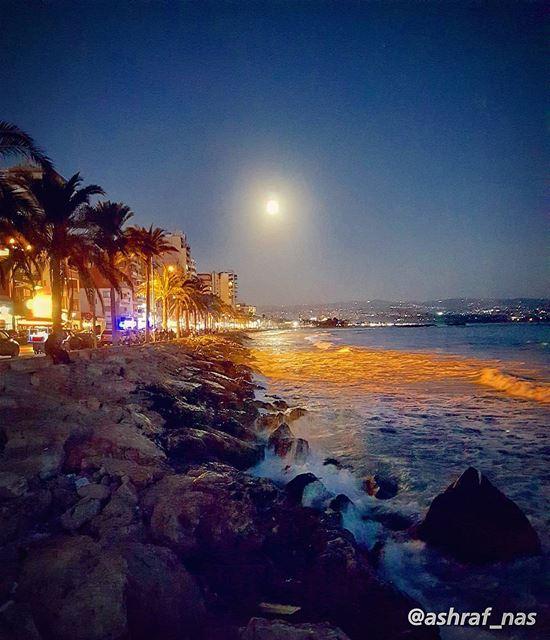ذاكرٌ ليلَ هُنا قُلْتَ أين القمرُجاء حتّى بابِنا قمرٌ يعتذِرُ...... (Tyre, Lebanon)