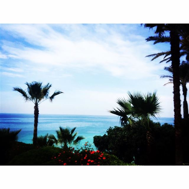 Summer is finally here!💙🌴 summer instapic landscape ...