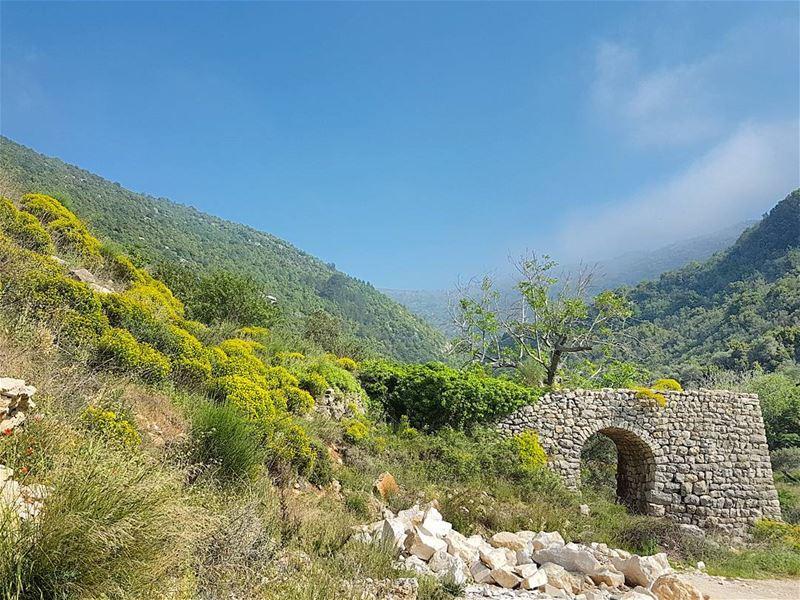 Passing through the arch. ... (Mount Lebanon)