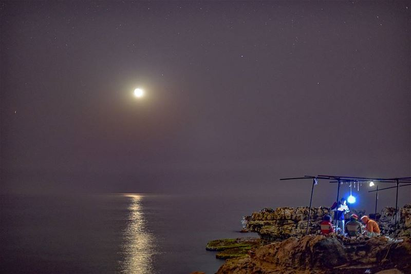 Night camping by the sea ... lebanon batroun kfarabida ig_lebanon ... (Kfarabida Batroun)