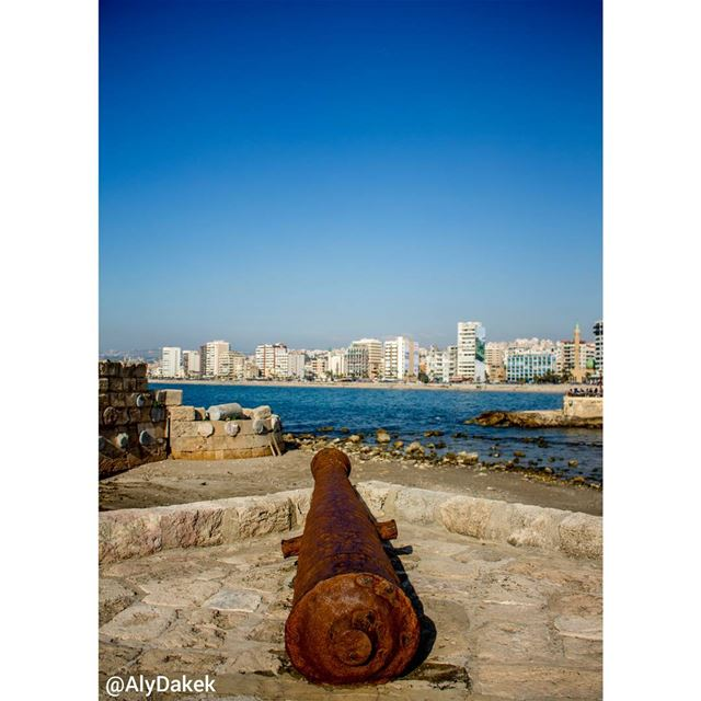 """""""Am too insane to explain, and you are too normal to understand"""". -... (Sidon Sea Castle)"""