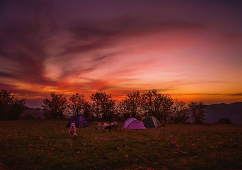 🌄⛺..... camping sunset sun clouds adventure forest view nature... (Mount Sannine)