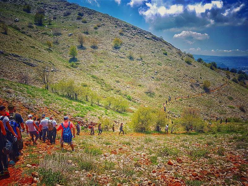 مشوار_مع_مغوار 🇱🇧 cedars natureloversgallery naturephotography ... (Arz el Bâroûk)