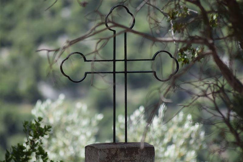 يا رب احمي لبنان livelovelebanon church christ beautifulview tree ...