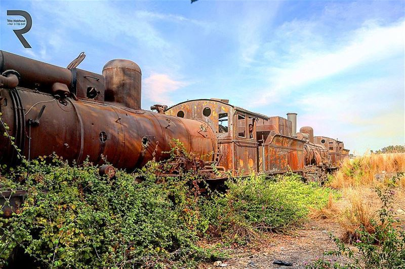 What's Left...Abandoned Train Station. Tripoli . Lebanon 🇱🇧 ...