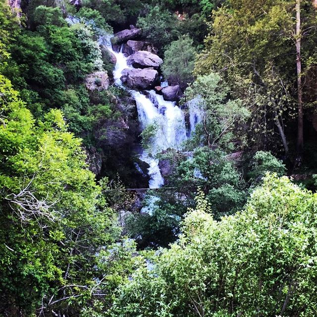 nature God creation green trees waterfall water river mountain ... (Faraya, Mont-Liban, Lebanon)