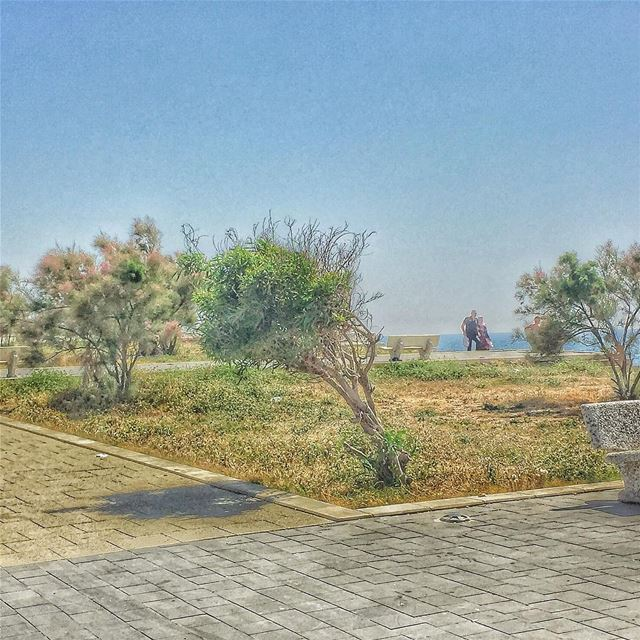 ان قبلتك مره صدفة اوعديني ، اوعديني تمدي ايدك تاخدي من ايدي السلام وان لمحت (Al Kharab Beach)