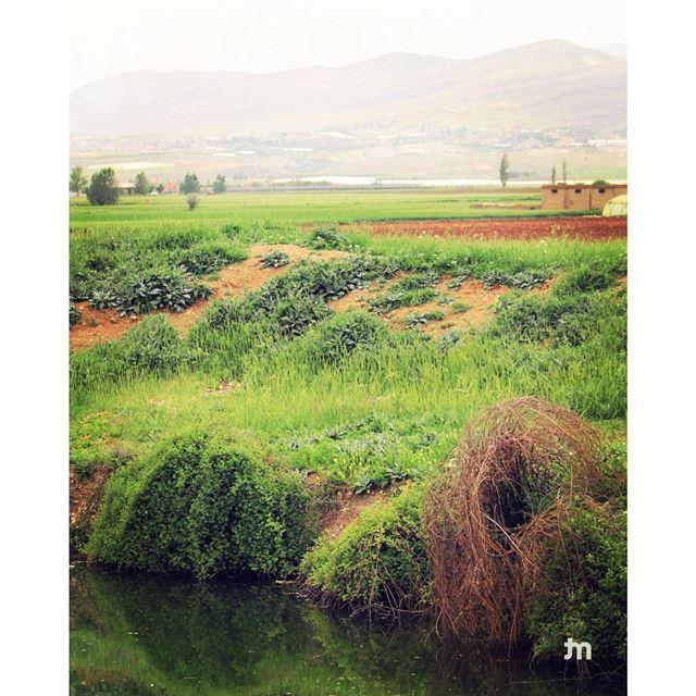 - Bekaa valley -.. ptk_lebanon amazinglebanon lebanon_hdr lebanon ...