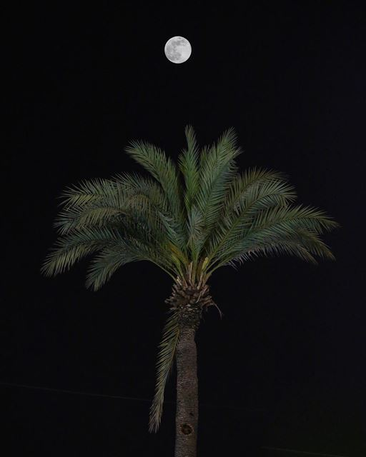 I wish moon always be full and bright and you always be cool and right 🌕 • (بيروت الطريق الجديدة)