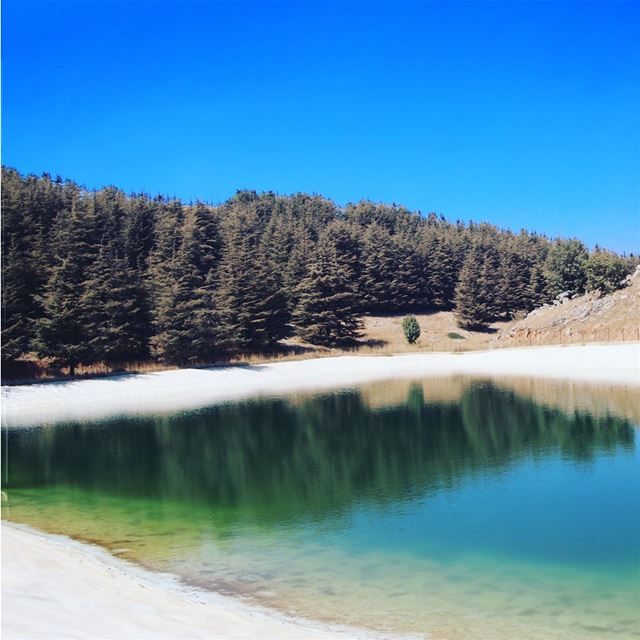 Barouk Hill-Lake 💙 • pan·o·ram·ic /1/ • ➡️Swipe to see 💚 panoramic ... (Arz el Bâroûk)