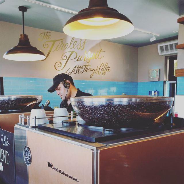 All things coffee ☕💜 lebanon starbucks starbucksmena jbeil ...