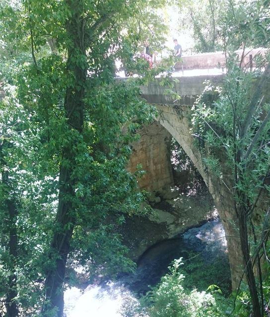 insta_lebanon livelovenature livelovelebanon lebanonshots ...