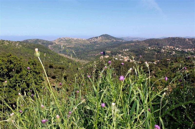 morning peaceofmind peacefull mountains jezzine jnoubing ... (Rimât, Al Janub, Lebanon)