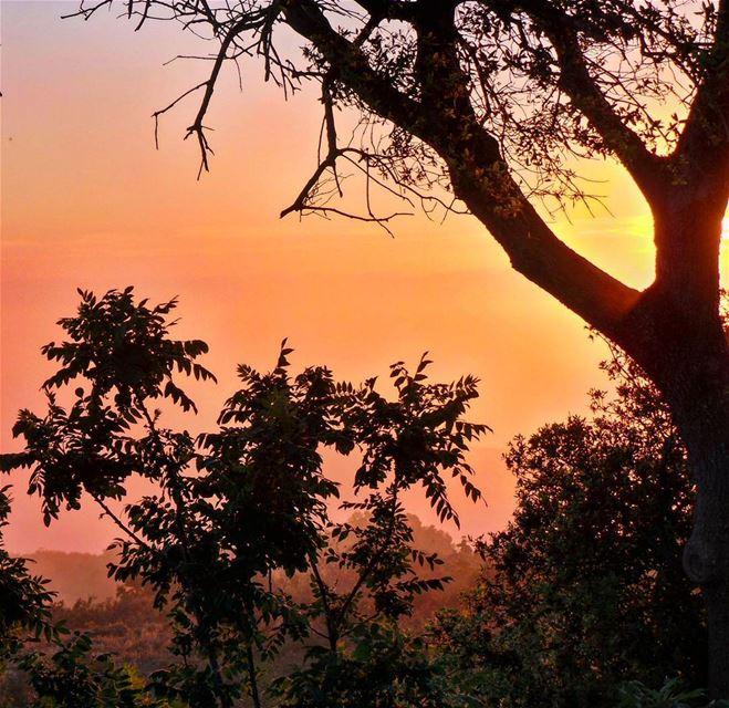 nikontop_ nikonworld bns_sky bns_sunset naturelovers unlimitedsunset... (Jabal Al Salib - Deir El Kamar)