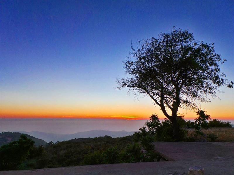 skysun_friends bns_nature bns_silhouette nikontop_ nikonworld ... (Dayr Al Qamar, Mont-Liban, Lebanon)