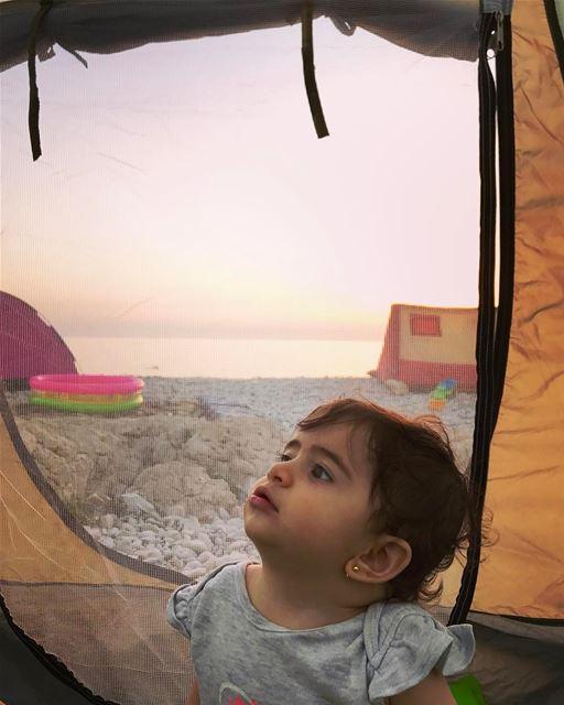 Good morning from Tati 👼🏻! She like camping...... livelovelife ... (Kfar Abida)