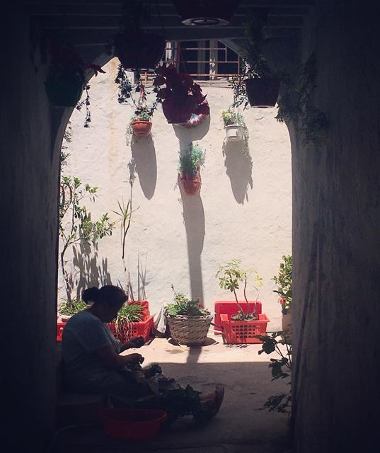 Cleaning mint at the doorstep streetphotography food herbs arablife ... (Tyre Souks)