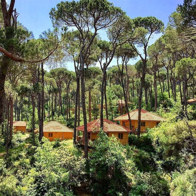 It's time to refuel your soul! 🏡🌳☉Photo credits: @ahmad_habbar ... (La Maison de la Forêt)