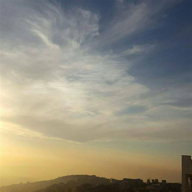sunset clouds flowers rose trees pinetrees instapic instalovers aley... (Kfarmatta)