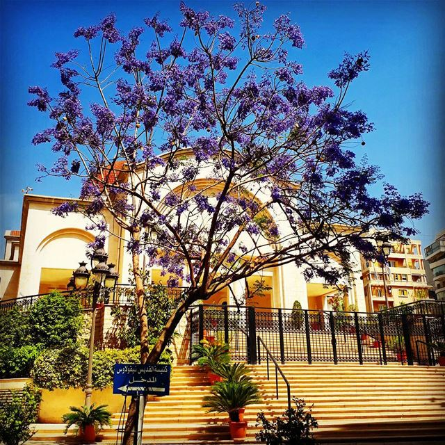 achrafiye stnicolas church blessings bluesky trees purple stairs ... (Achrafieh St. Nicolas Church)