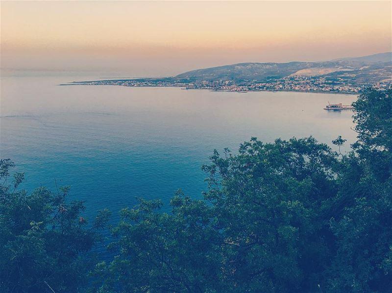 lebanon hamat batroun chekka hery livelovelebanon livelovebeirut ... (Saydet El Nourieh)
